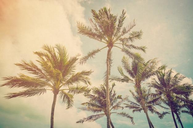 Palmeira de coco com efeito vintage. Foto Premium