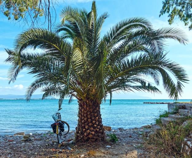 Palmeira e bicicleta perto da praia pedregosa de verão lefkada, grécia