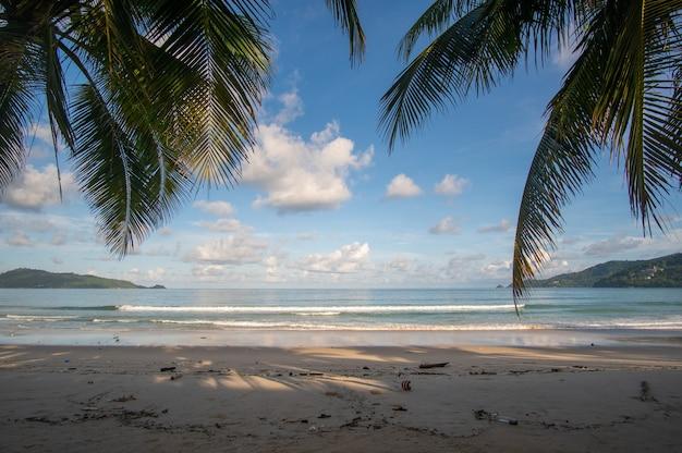 Palmeira na praia do mar