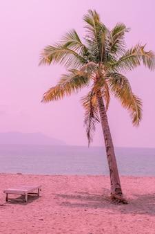 Palmeira rosa perto do oceano