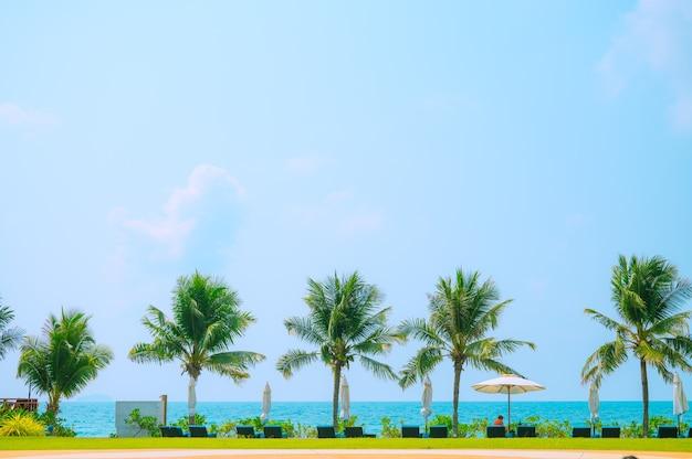 Palmeira tropical com luz do sol no céu azul. férias de verão e a natureza viajam o conceito de aventura. coqueiros.