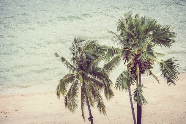 Palmeira vintage