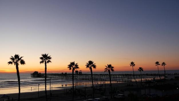 Palmeiras e céu crepuscular na califórnia, eua. atmosfera do sol tropical da praia do oceano. vibrações de los angeles.