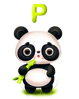 Panda bonito dos desenhos animados com um bambu e uma letra do alfabeto