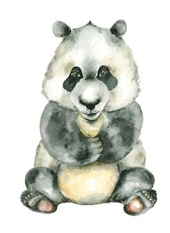 Panda sentado em aquarela