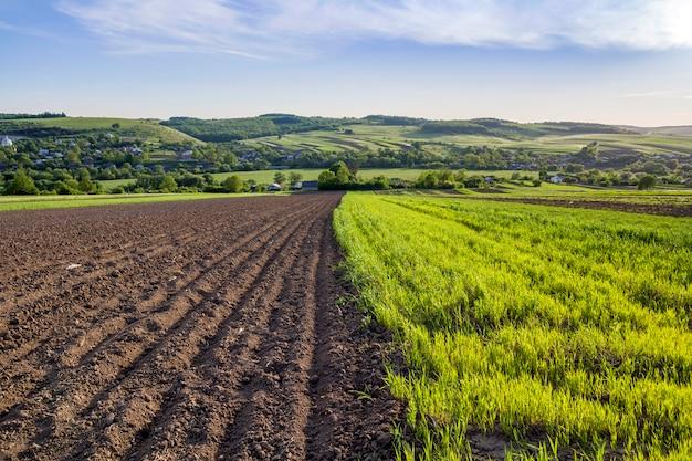 Panorama amplo da primavera pacífica bonita dos campos arados e verdes iluminados pelo sol da manhã que estica ao horizonte sob o céu claro em colinas e na vila distantes. agricultura e conceito de agricultura.