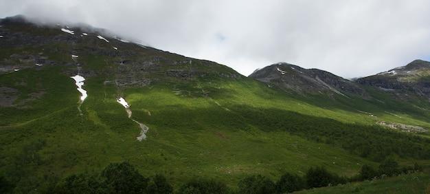 Panorama da montanha coberta de musgo verde.