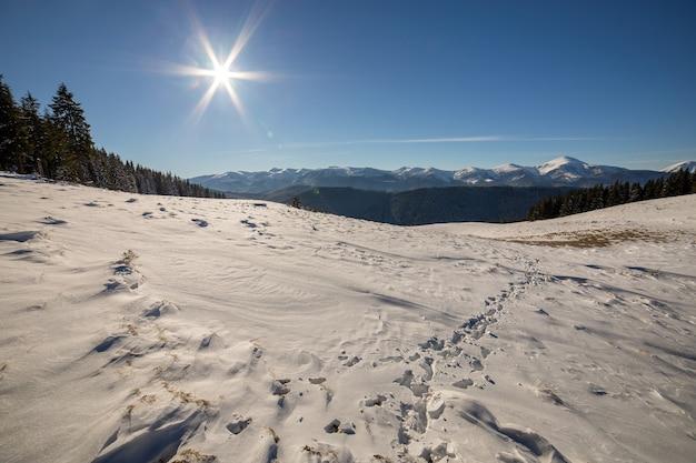 Panorama da paisagem de inverno com colinas nevadas, montanhas brancas distantes, floresta escura e céu azul claro com sol brilhante.