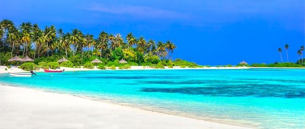 Panorama da praia tropical nas ilhas maldivas