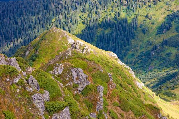 Panorama das montanhas dos cárpatos em dia ensolarado de verão