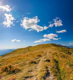 Panorama das montanhas dos cárpatos em dia ensolarado de verão.