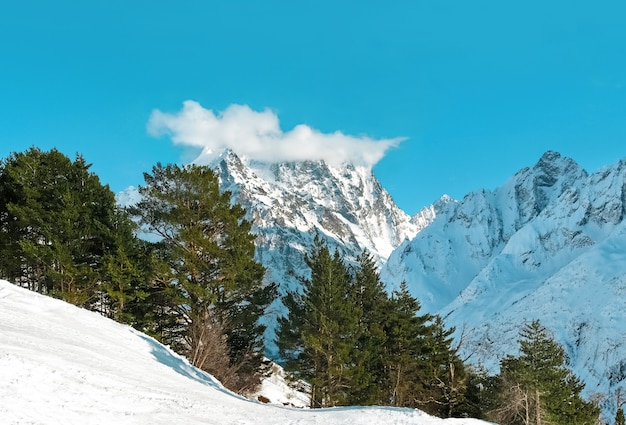 Panorama de montanhas rochosas do cáucaso nas nuvens em dombai no fundo do céu azul. paisagem de inverno linda com floresta.