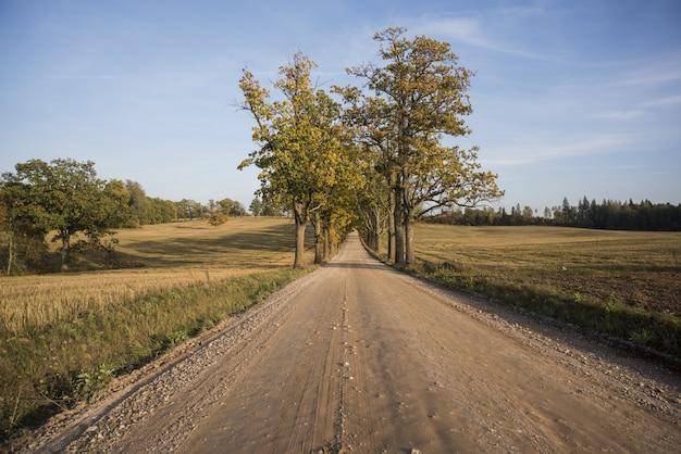 Panorama de outono. paisagem.