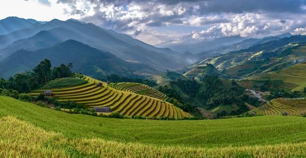 Panorama de terraços de arroz bonito, em mu cang chai, yenbai, vietnam.