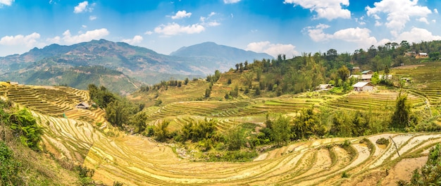 Panorama do campo de arroz em socalcos em sapa, lao cai, vietnã