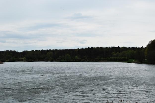 Panorama do lago. vista panorâmica do lago em um dia chuvoso. ondas de água com ventos fortes.