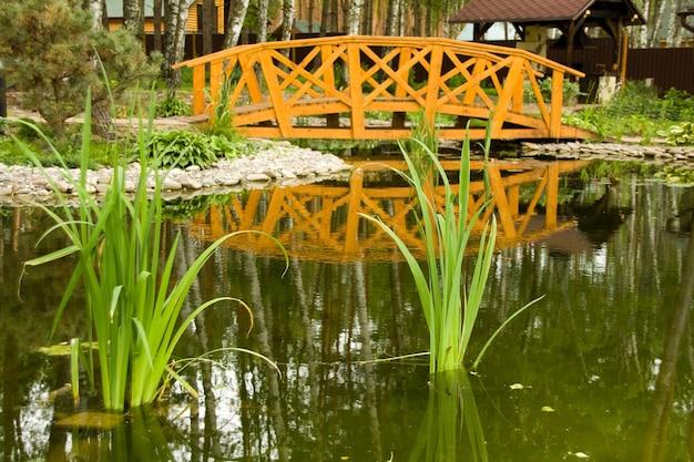 Pântano de água doce com ponte