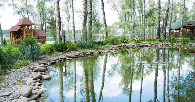 Pântano de água doce no parque