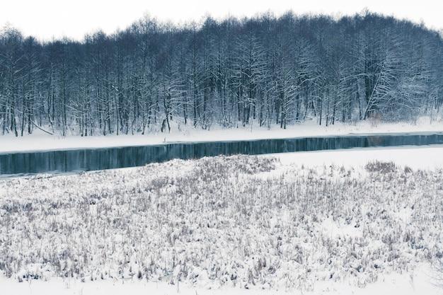Pântano de inverno com pequeno rio e floresta escura ao contrário