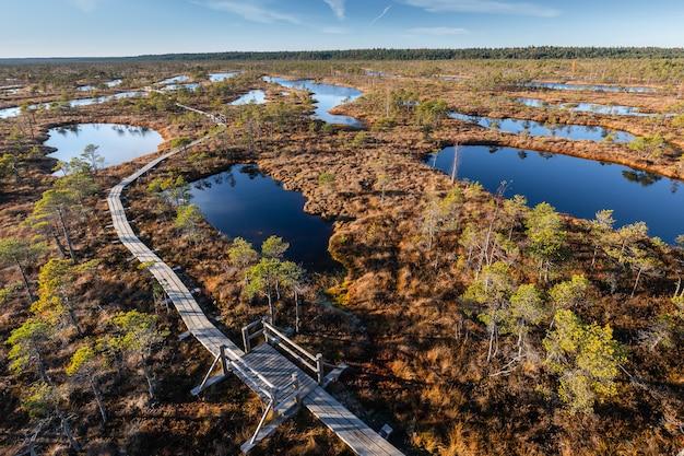 Pântano elevado na letónia. parque nacional kemeri. panorama