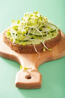 Pão de centeio saudável com brotos de rabanete de pepino abacate