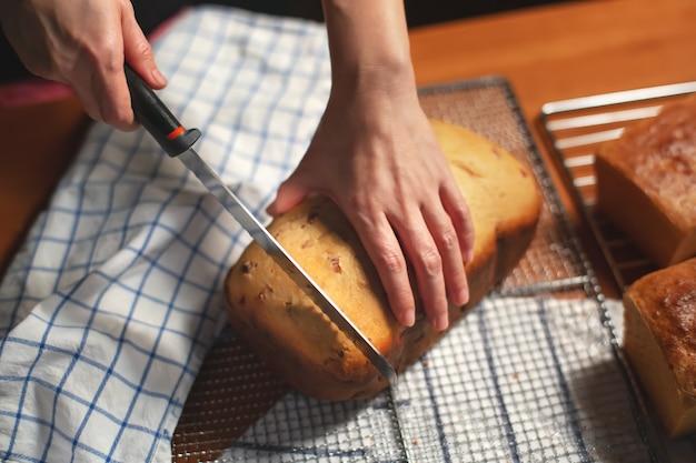 Pão fresco de cranberry com uma mão de mulher segurando uma faca
