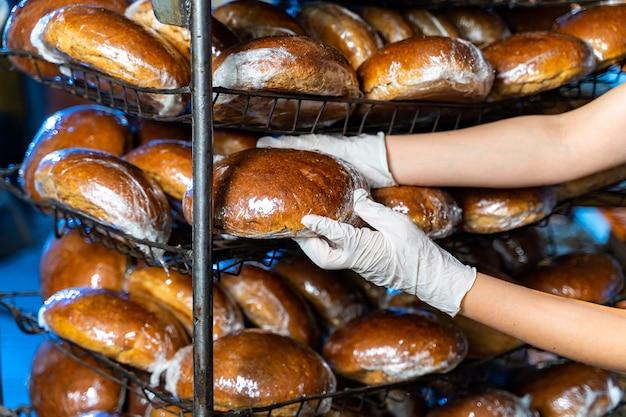 Pão nas mãos de um padeiro. asse quente no forno. produção industrial de pão. mãos de padeiro com pão