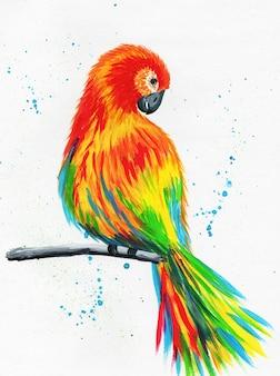 Papagaio brilhante sentado em um galho papagaio multicolorido vermelho-amarelo desenhado à mão.