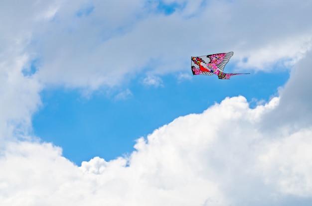 Papagaio colorido no céu azul com uma grande nuvem