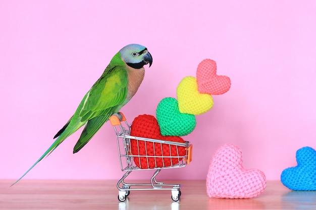 Papagaio no carrinho de compras em miniatura modelo e colorido de coração de crochê artesanal para dia dos namorados