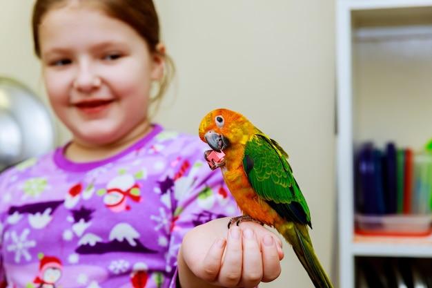 Papagaio sentado em uma mão de meninas