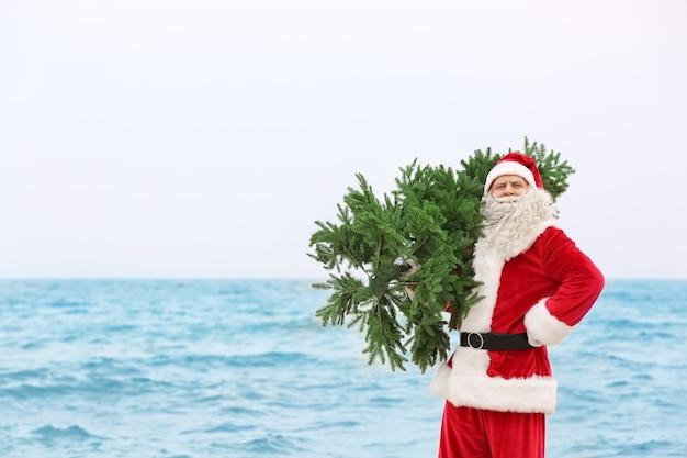 Papai noel autêntico com árvore de natal no mar