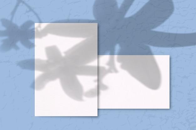 Papéis em branco com sombra de planta na mesa azul