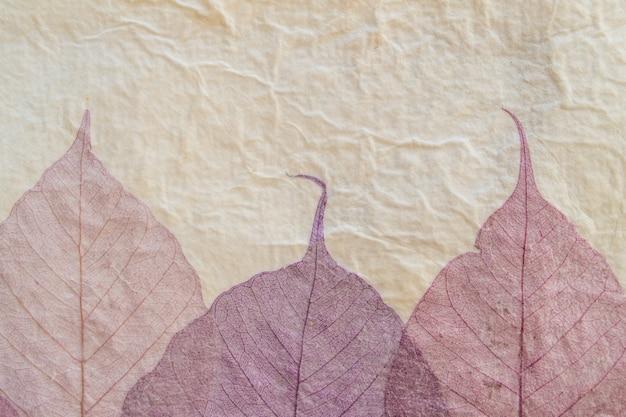 Papel artesanal japonês com padrão de folhas de violeta