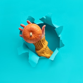 Papel azul menta plana colocar com rasgado buraco, mão com abóbora no buraco