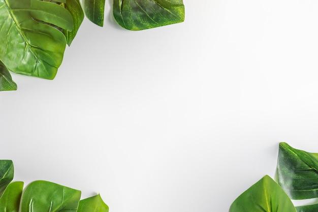 Papel branco e folhas verdes