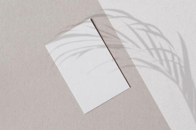 Papel branco em branco com sombra de folhas de palmeira em uma parede de dois tons