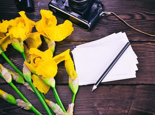 Papel cartão postal e buquê de íris amarelas