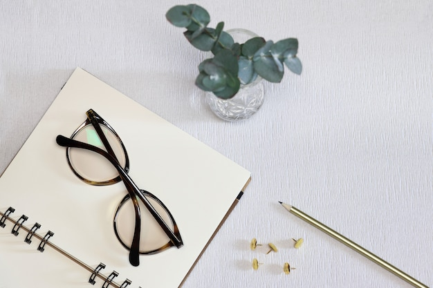 Papel de caderno aberto com óculos escuros, caneta dourada, alfinetes e planta verde