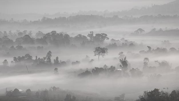 Papel de parede de fundo preto e branco de montanha e névoa