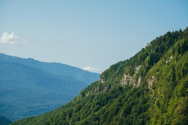 Papel de parede natural com altas montanhas no nevoeiro e colina verde