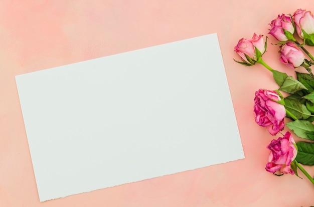 Papel de vista superior com flores