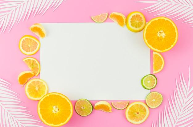 Papel em branco com frutas cítricas e folhas de palmeira