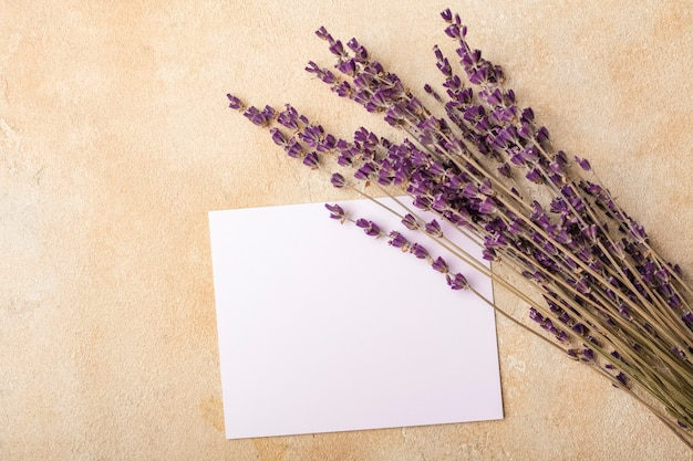 Papel em branco e flores de lavanda sobre um fundo claro. arranjo de casamento simples. brincar. copie o espaço