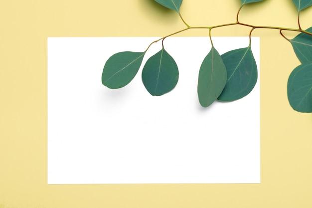 Papel em branco, galhos de eucalipto em fundo amarelo