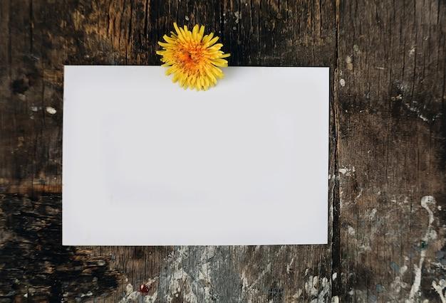 Papel em branco simulado carta cartão postal com flor dente de leão no fundo de madeira