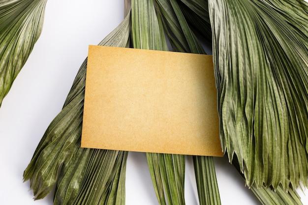 Papel em branco sobre folhas secas de palmeiras tropicais