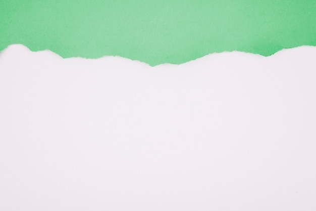Papel esfarrapado verde em branco