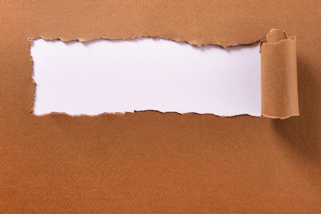 Papel rasgado marrom rolado borda cabeçalho fundo branco