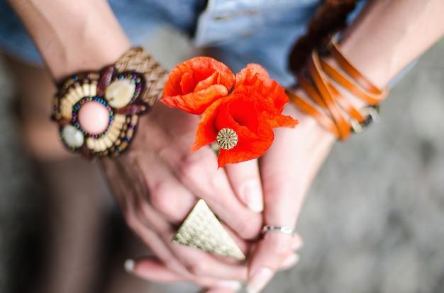 Papoula flores nas mãos de mulheres